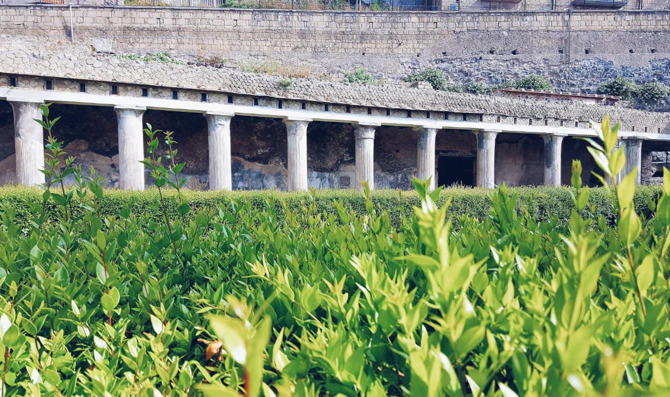 visitar-Herculano-columnas