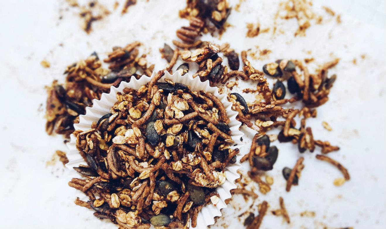 granola-casera-ciruela