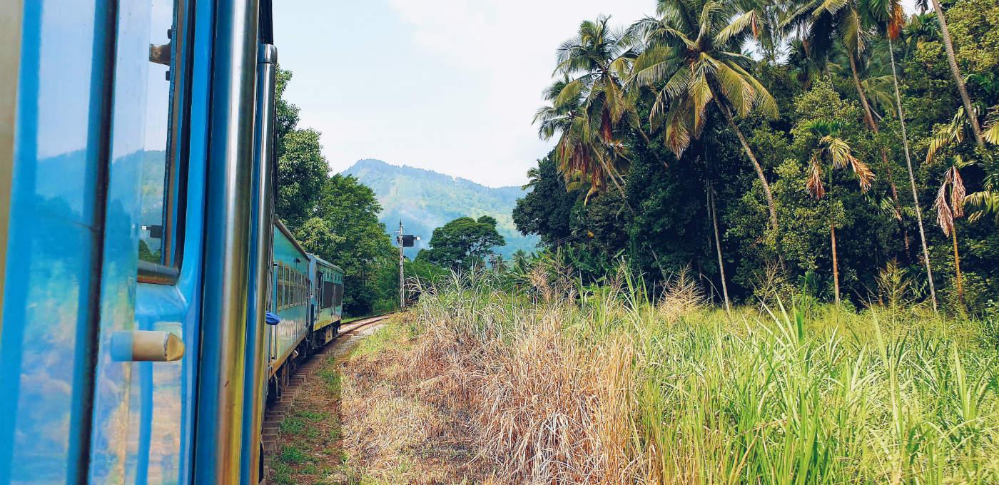Tren de Kandy a Ella Imprescindible en Sri lanka