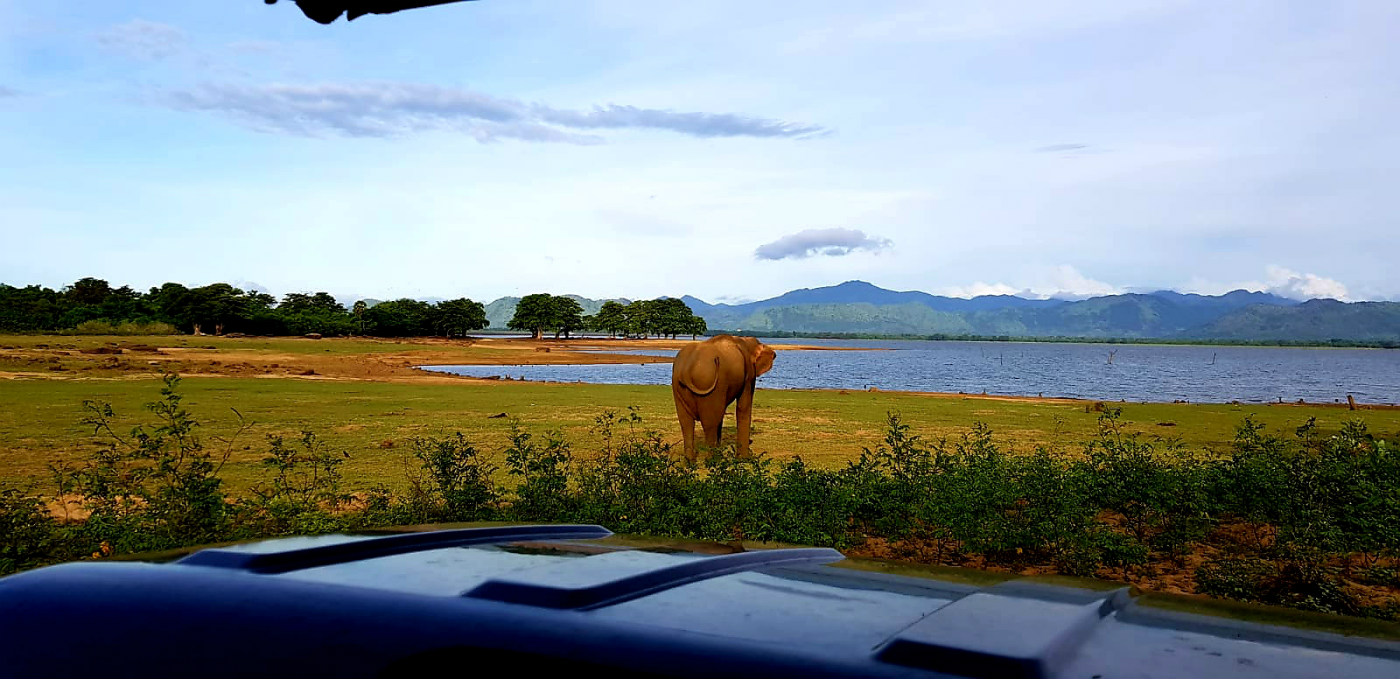 Imprescindibles de Sri Lanka en 12 días, ruta y presupuesto