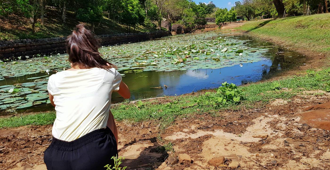 qué-ver-en-sigiriya-lago-nenufares