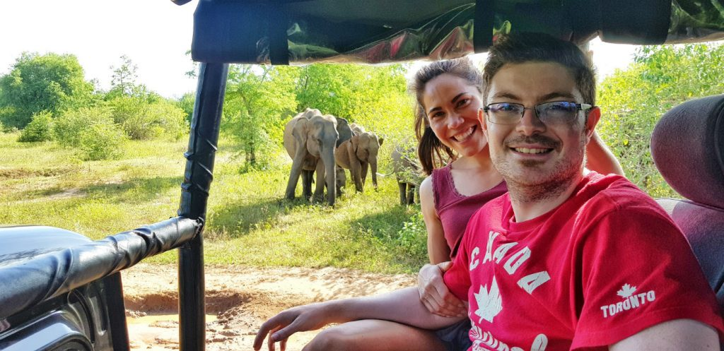 elefantes-bebes-en-safari