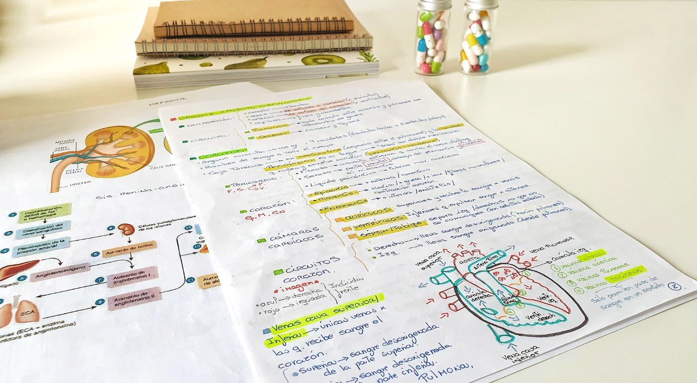apuntes-estudiar-online